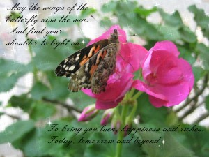 May the wings of the butterfly kiss the sun. And find your shoulder to light on. To bring you luck, happiness and riches. Today, tomorrow and beyond.