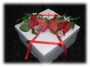 Butterfly-release-box