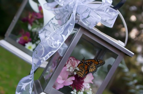 Butterfly Wish Bouquets